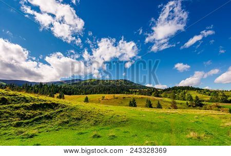 Grassy Meadows And Forested Hills. Beautiful Landscape With Mountain Ridge In The Distance Under The