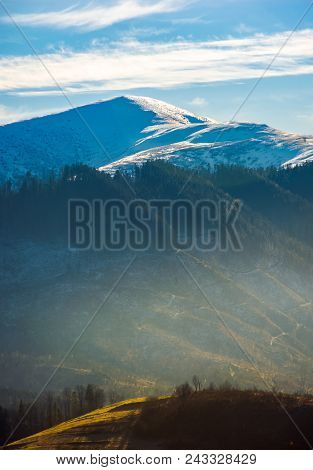 Snowy Top Of Velykyi Verkh. Beautiful Morning Scenery Of Late Autumn In Carpathian Mountains, Ukrain
