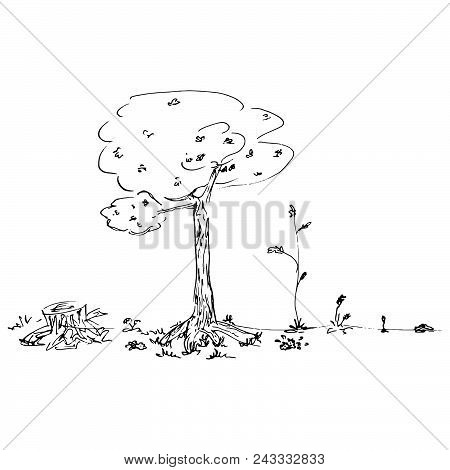 Concept Of The Development Of Trees From The Bush To The Tree And Stump. Vector Illustration Of Tree