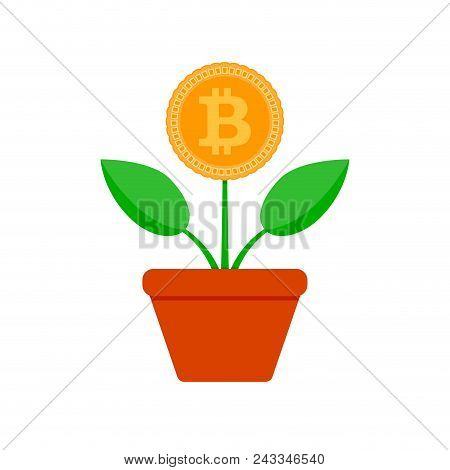 Growth Bit Coin. Crypto Potted Plant. Vector Bitcoin Finance, Financial Crypto Growing, Btc Profit I