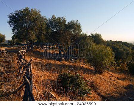Landcape Of Gargano, Apulia,  Italy