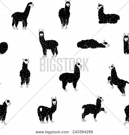Vector Seamless Pattern With South America Cute Lama With Decorations. Isolated Outline Cartoon Baby