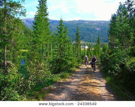 Mountain Bike Cyclists   Riding Uphill