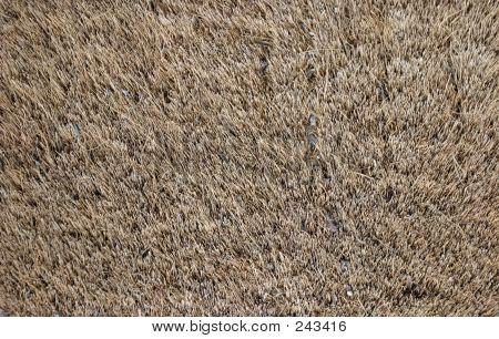 Hairy Rug Texture