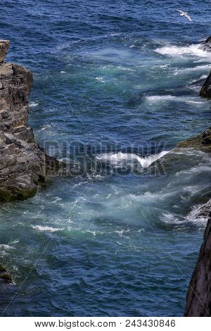 Blue Water And Waves, Rocky Coastline Of Newfoundland