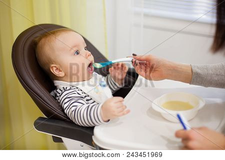 Young Mother Feeding Her Little Baby Son With Porridge, Who Sitting In High Baby Chair For Feeding.