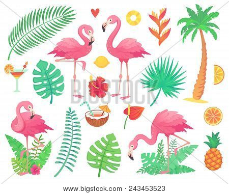 Cartoon Cute Pink Flamingo And Tropical Plants. Beach Palm, Green African Plant Monstera Leafs, Flor