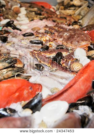 Great Variety Of Fish And Seafood