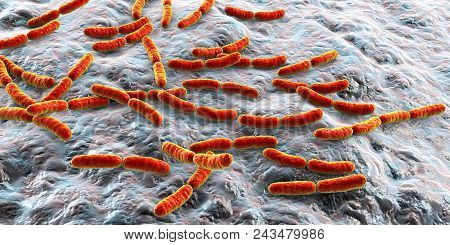 Bacteria Lactobacillus, 3d Illustration. Normal Flora Of Small Intestine, Lactic Acid Bacteria. Prob