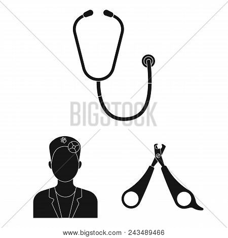 Veterinary Clinic Black Icons In Set Collection For Design. Treatment Of A Pet Vector Symbol Stock