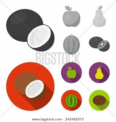 Coconut, Apple, Pear, Watermelon.fruits Set Collection Icons In Monochrome, Flat Style Vector Symbol