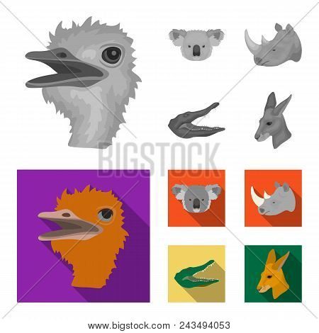 Ostrich, Koala, Rhinoceros, Crocodile, Realistic Animals Set Collection Icons In Monochrome, Flat St