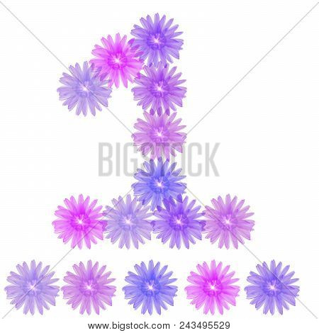 Number 1 Isolated On White Background. 3d Number One Of Purple Flowers, Design Element