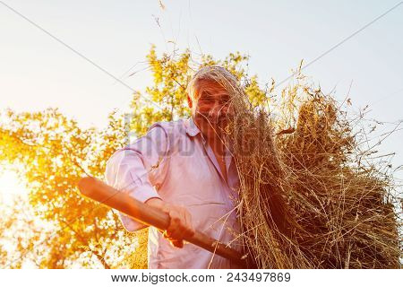 Happy Farmer Man Gathers Hay With Pitchfork At Sunset In Countryside. Agriculture And Farming Concep