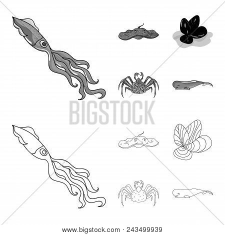 Electric Ramp, Mussels, Crab, Sperm Whale.sea Animals Set Collection Icons In Outline, Monochrome St