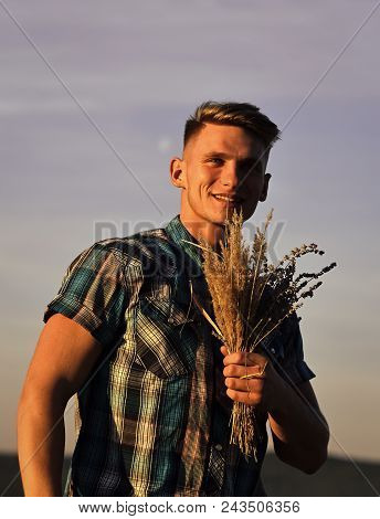 Serious Man. Farmer Man With Wheat In Hand, Harvest Concept. Farmer With Spikelet Bouquet On Blue Su