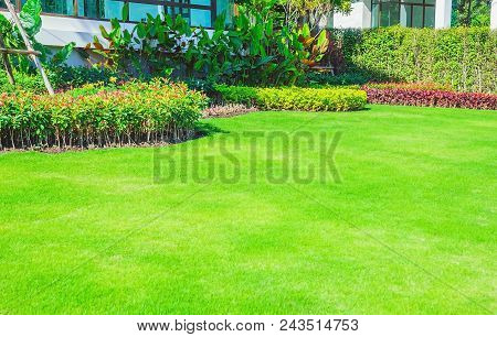 Landscaped Formal Garden, Front Yard With Garden Design, Peaceful Garden, Green Garden For The Backg