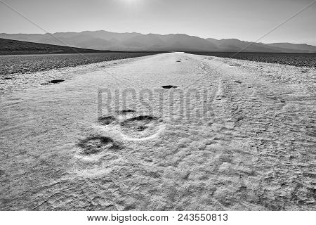 Moon-like Surface Of The Badwater Basin.