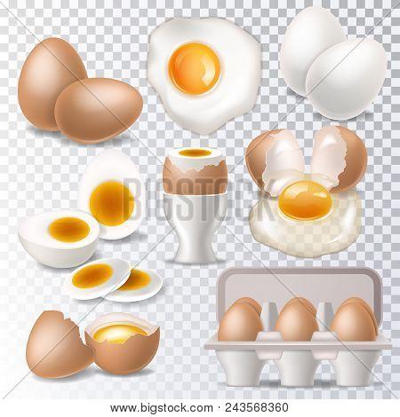 Egg Vector Healthy Food Eggwhite Or Yolk In Egg-cup For Breakfast Illustration Set Of Eggshell Or Eg
