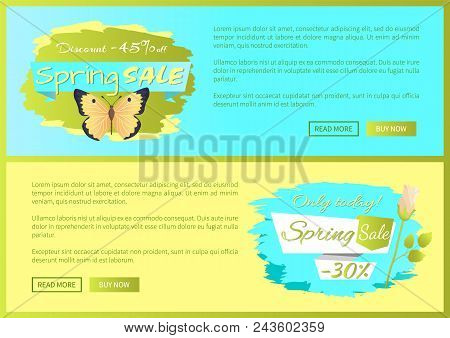 Spring Sale Poster Discount -45 Colorful Butterfly, Rose Flower Springtime Advert Card Design Vector