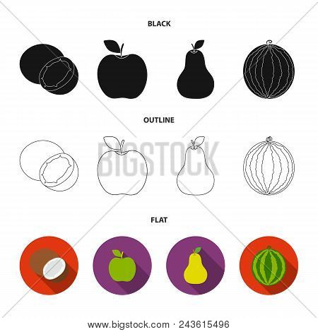 Coconut, Apple, Pear, Watermelon.fruits Set Collection Icons In Black, Flat, Outline Style Vector Sy