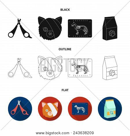 Scissors, Cat, Bandage, Wounded .vet Clinic Set Collection Icons In Black, Flat, Outline Style Vecto