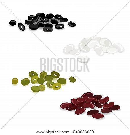 Collection Set Of Dried Kidney Legumes. Mung Beans, White, Red, And Black Beans Vector Isolated On W