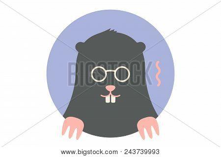 Mole. Icon Of Black Mole. Portrait In Flat Graphics - Mole On Colorful Circle Background. Vector Ill