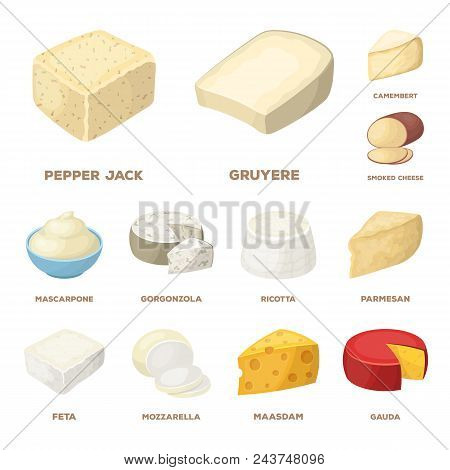 Different Kind Of Cheese Cartoon Icons In Set Collection For Design.milk Product Cheese Vector Symbo