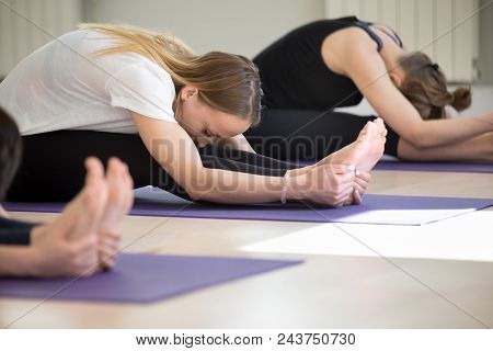 Group Of Young Yogi People Practicing Yoga Lesson, Doing Seated Forward Bend Exercise, Paschimottana