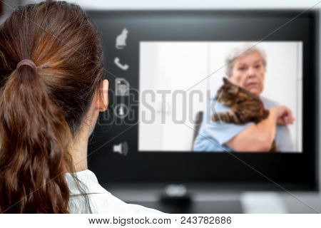 Telemedicine With The Veterinarian, Vet Looking At The Desk, Elderly Woman And A Cat On Live Chat Wi