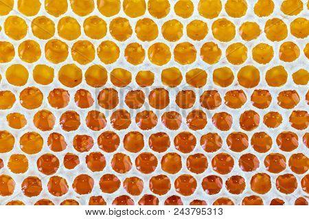 Golden Amber Honey Drop Background Texture Pattern