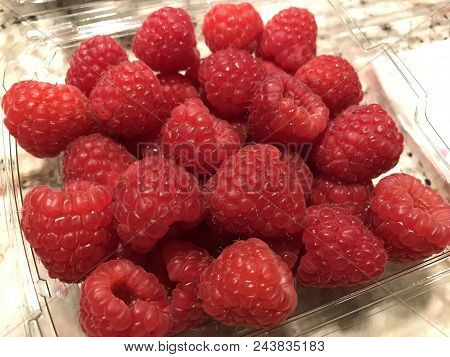 Market Fresh Raspberries Bought From The Local Grocery Store.