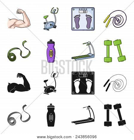 Measuring Tape, Water Bottle, Treadmill, Dumbbells. Fitnes Set Collection Icons In Black, Cartoon St