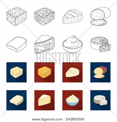 Gruyere, Camembert, Mascarpone, Gorgonzola.different Types Of Cheese Set Collection Icons In Outline