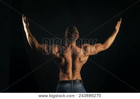 bodybuilding. Symmetry, muscularity concept. Bodybuilder man show biceps, triceps with raised hands on dark background, back view. Sport, bodybuilding, fitness. poster