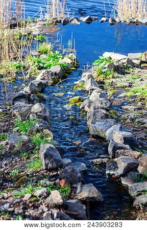A Beautiful Stream Flows Among The Stones. A Small Stream In The Park. Beautiful Nature.