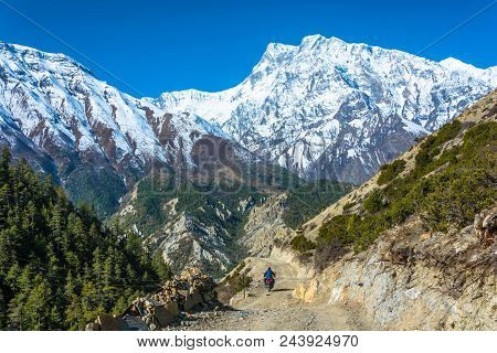 Motorcyclist On A Beautiful Mountain Road In The Himalayas On A Sunny Spring Day, Nepal.
