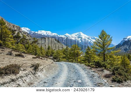 Road In The Mountains Of Nepal.