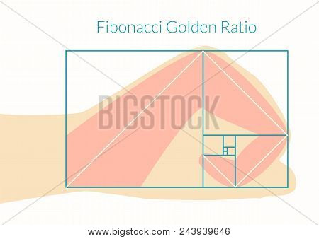 Graphical Explanation Of The Algorithm Fibonacci Number In Nature. Human Hand And Fibonacci Golden R