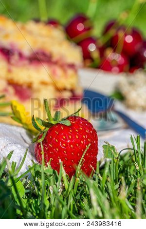 Detail Of Ripe Red Strawberry In Front Of Cherry Cake On White Towel In Grass