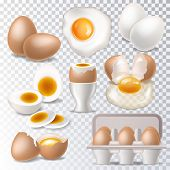 Egg vector healthy food eggwhite or yolk in egg-cup for breakfast illustration set of eggshell or egg shaped ingredients isolated on white background. poster
