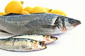 A bass and two sardine with several lemons, surrounded by white background poster