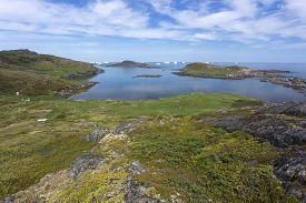 Low Vegetation Covering Fogo Island Coastline With Distant Icebergs; Newfoundland