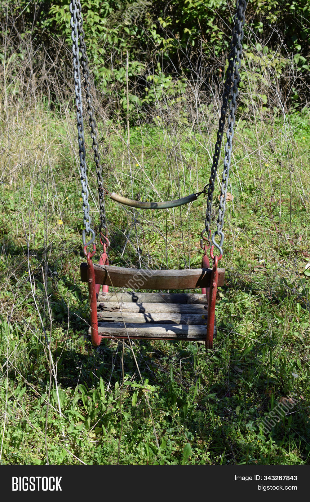 Old Swing Overgrown Image Photo Free Trial Bigstock