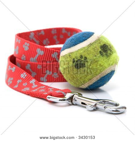 Dog Leash & Ball