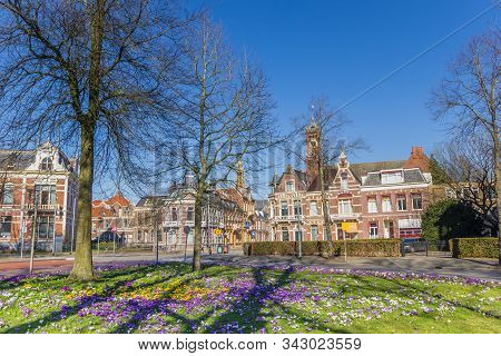 Crocuses, Old Houses And Church Tower In Historic City Groningen, Netherlands