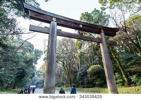 Crowds By Torii Gate Of Meiji Shrine In Shibuya, Tokyo