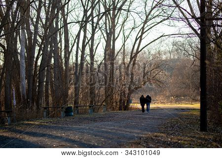 Unidentified Couple Walking Path In Forest Away From Viewer