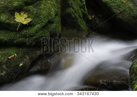 Group Of Big Stones With Moss And Leaf In Mountain Autumn Flowing Stream